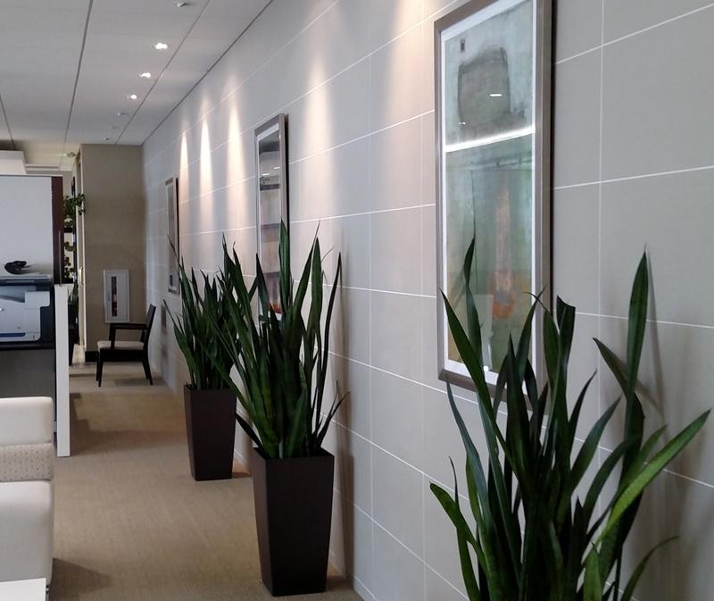 Interior Plant Maintenance Milwaukee Wi Interior Plant Design Milwaukee Plant Maintenance