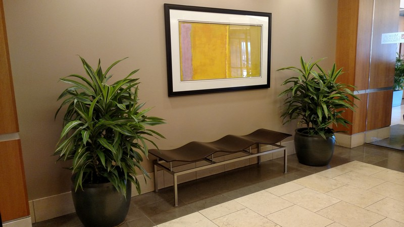 How Do Interior Plantscapes Enrich Interior Work Spaces?