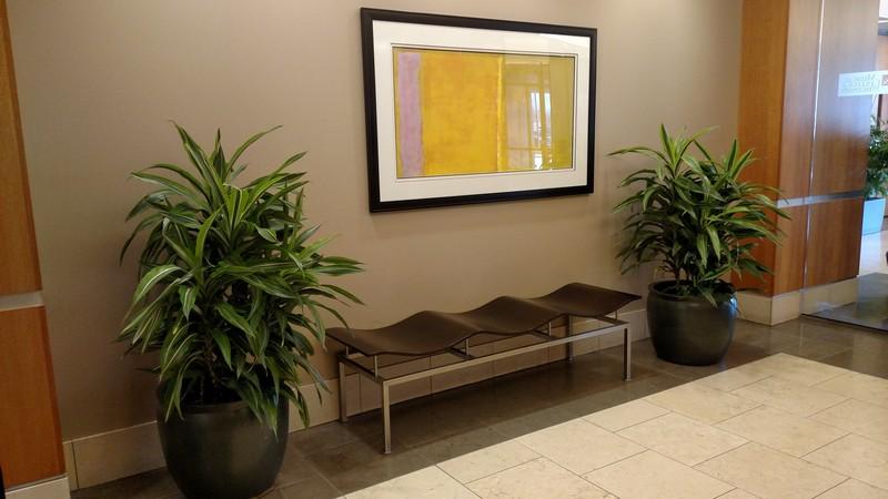 Interior Plantscapes Milwaukee WI