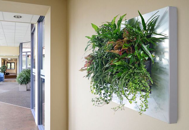 Living Wall Planter living walls milwaukee wi | living wall planter milwaukee