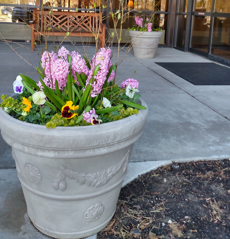 Decorative-Exterior-Planters-Milwaukee-WI